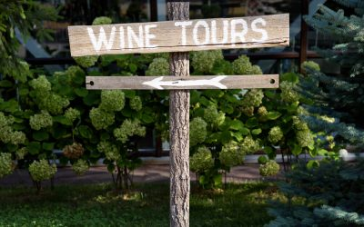 6 best wineries in the Macarthur region and around Camden