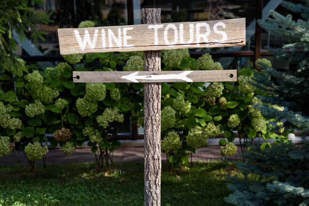 6 best wineries in the Macarthur region and around Camden
